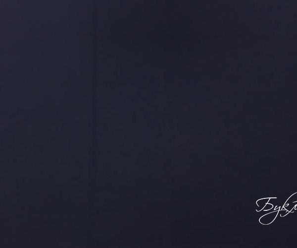 Armani Темно-Синий Трикотаж