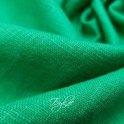 лен зеленый германия фото